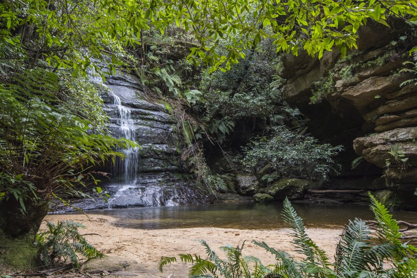 One of many hidden waterfalls in the Blue Mountains