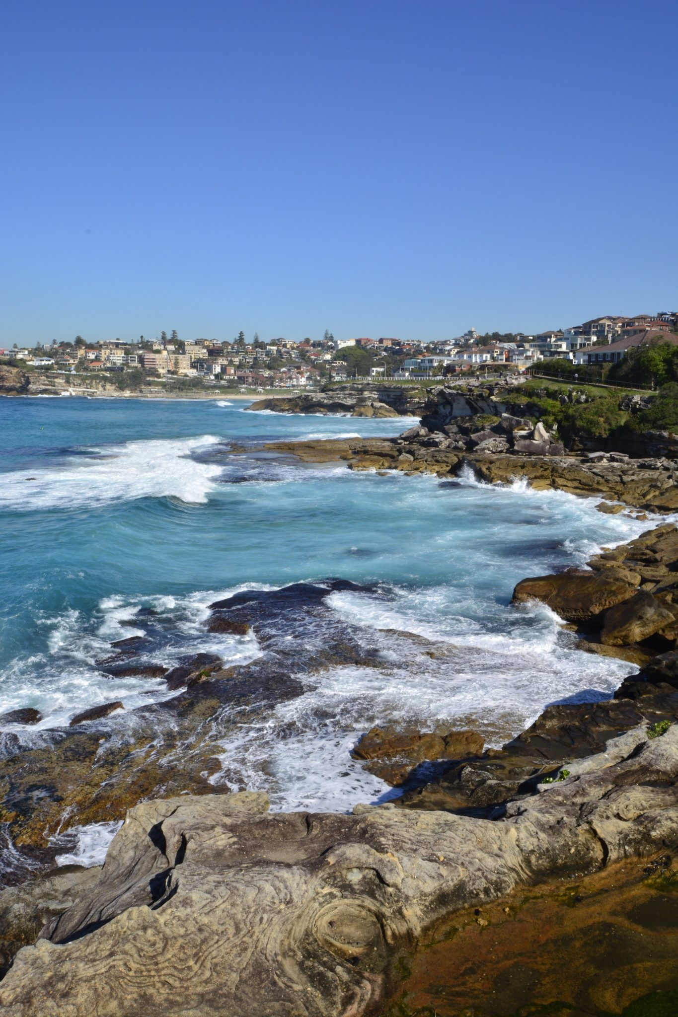 Tamarama beach, ocean walk from Bondi beach to Coogee beach