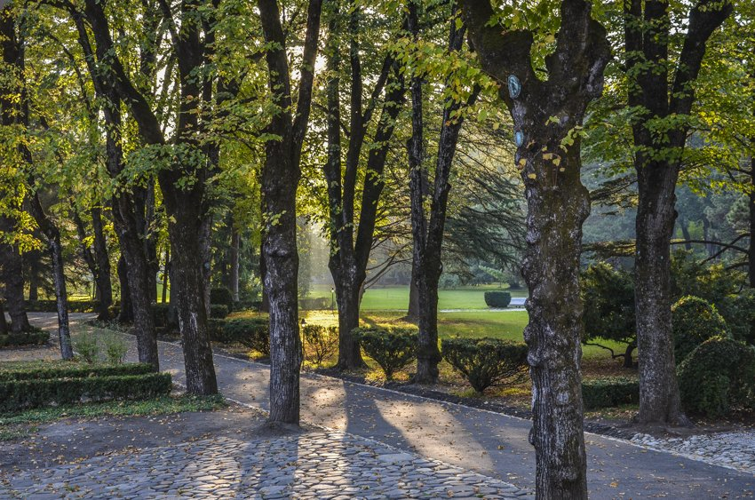 The grounds at Chavchavadze family estate, Tsinandali