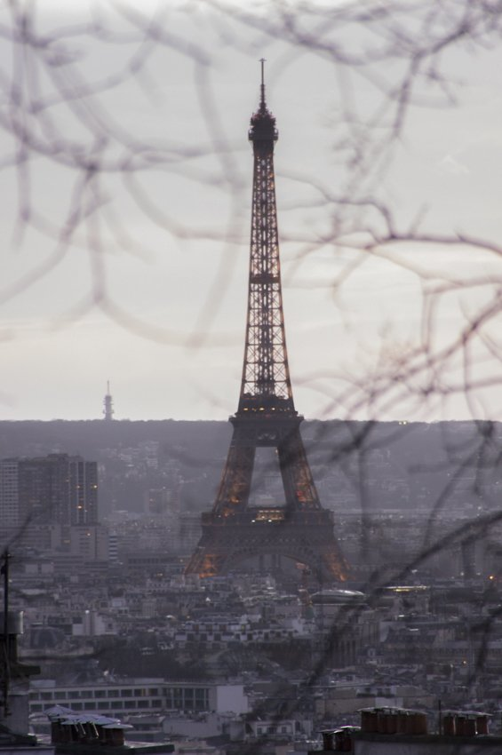 The Eiffel tower from Montmartre, through the trees