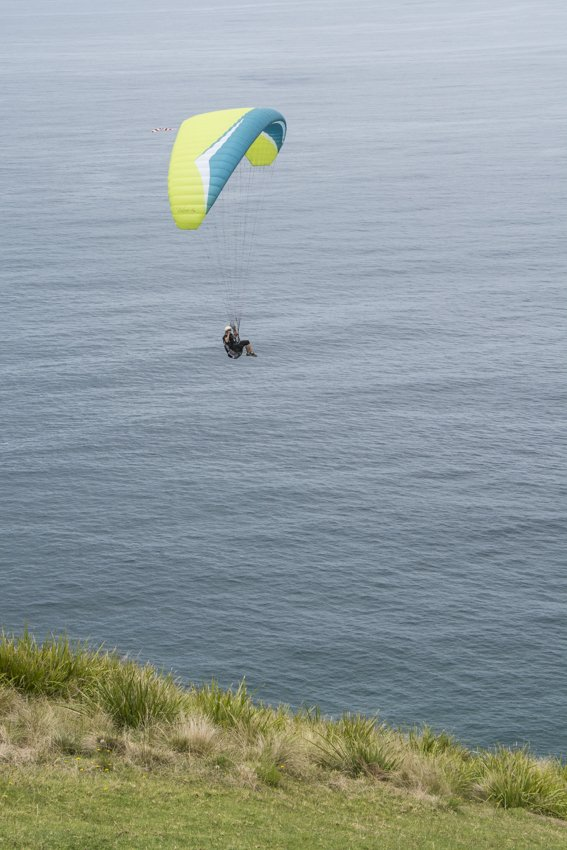Paraglider from Stanwell Tops Lookout, summer day trip from Sydney