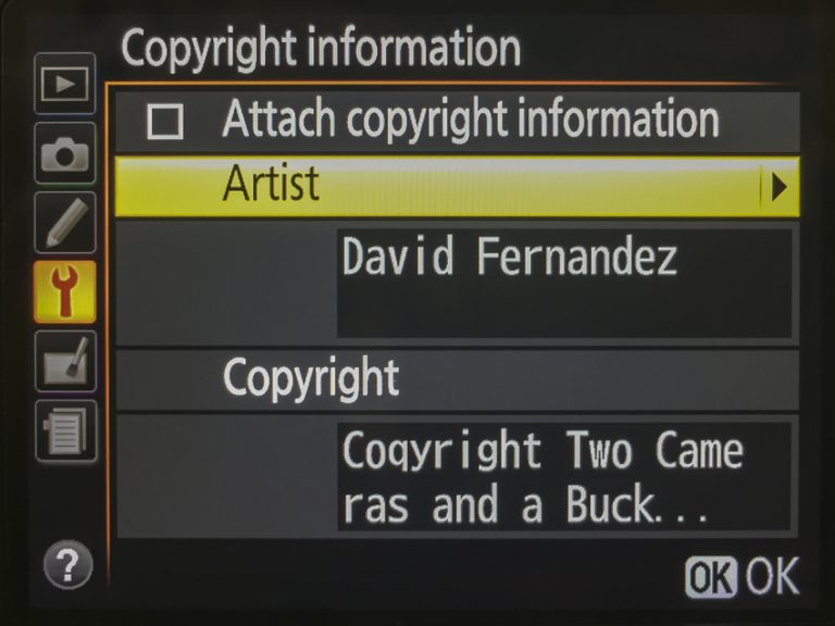 Setting the copyright information in a Nikon D7000 DSLR - protect your blog pictures