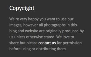Copyright statement - protect your blog pictures