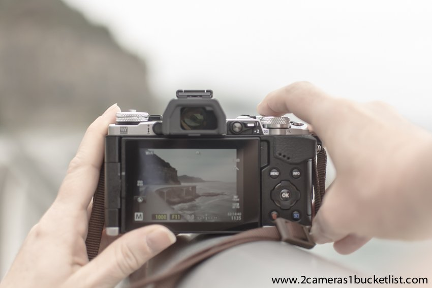 A picture with a visible watermark - protect your blog pictures