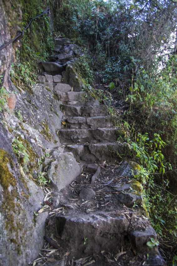 Stairs at Huayna Picchu